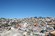 Biodegradable products: Bad for the environment?