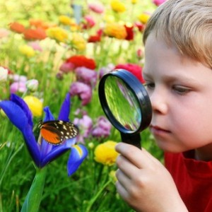 child and butterfly